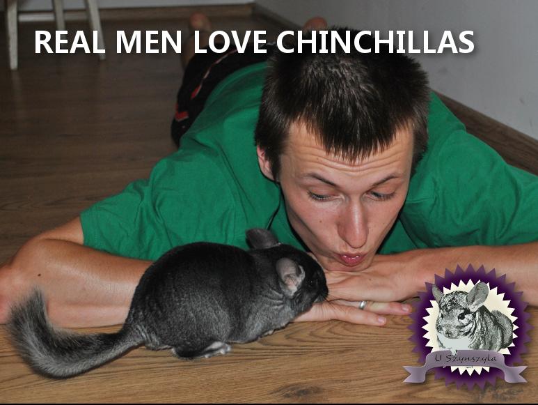 REAL MEN LOVE CHINCHILLAS