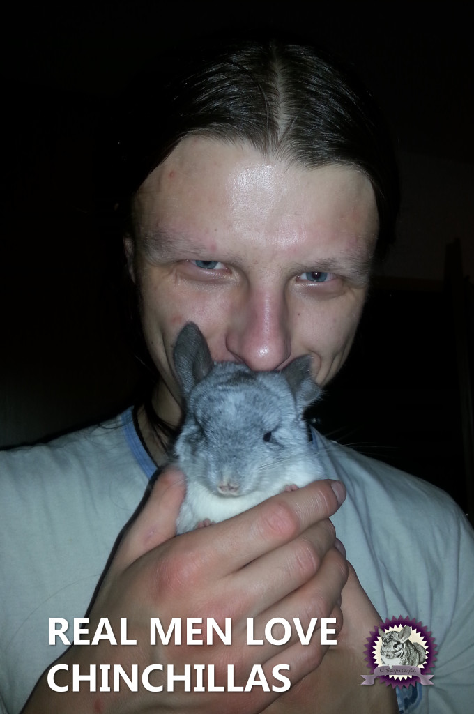 Real men love chinchillas