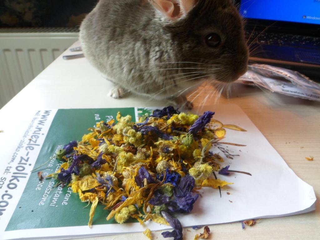 To on i Riki pokazują, czy dane zioła są smakowite, czy nie ;)