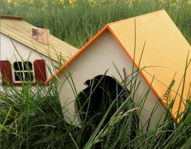 drewniany-domek-dla-szynszyli-pinokio