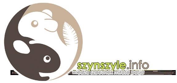 Szynszyle.info