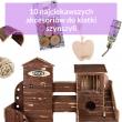 akcesoria-dla-szynszyli-fera.pl-blog-o-szynszylach