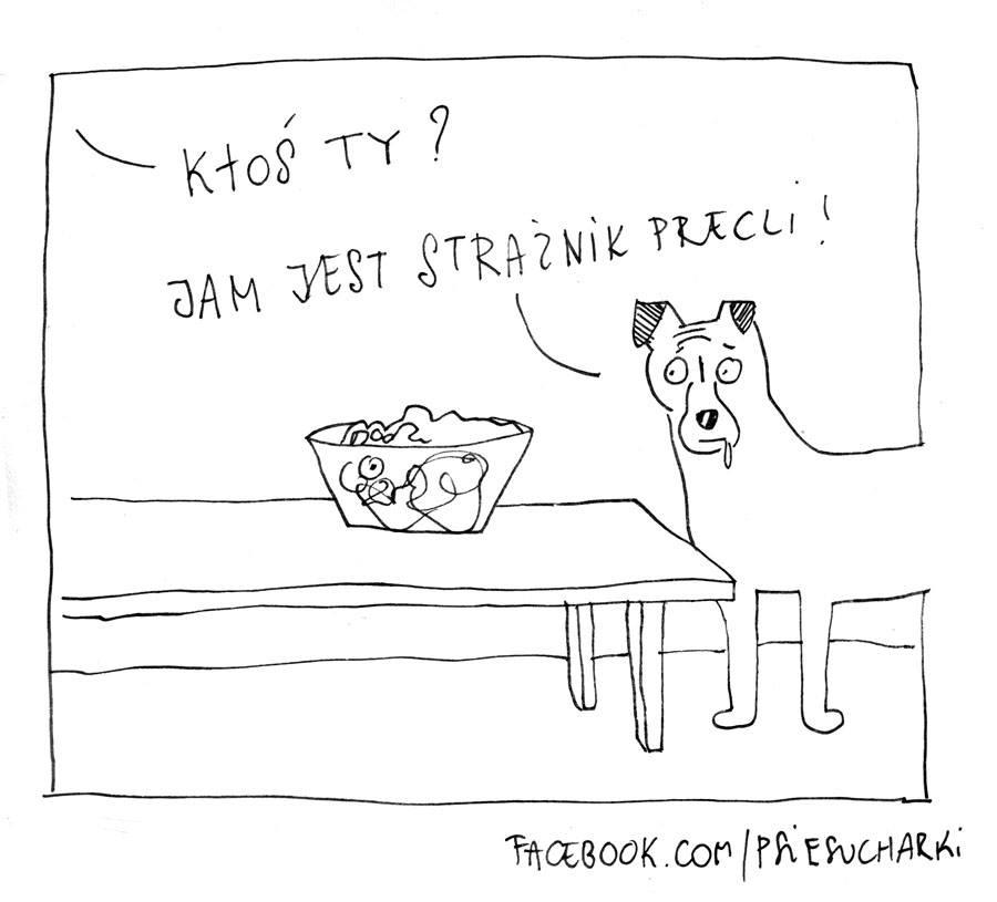 Psie sucharki - za co kochamy zwierzęta? blog o gryzoniach
